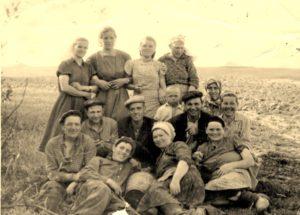 1957год На поле уборка свеклы